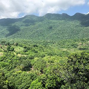 Vista Sierra Madre